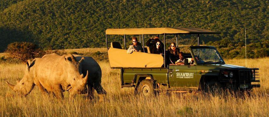 CAPE TOWN SAFARI TOUR
